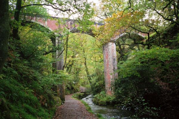 Dolgoch viaduct