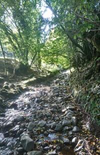 Path-cum-stream
