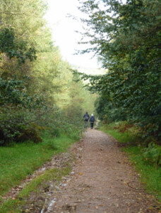 Ride in Cannock Chase