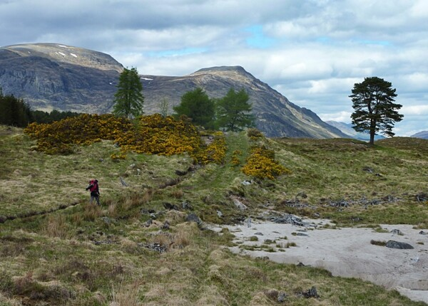 Path by Loch Ericht