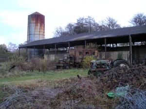 Down Park Farm