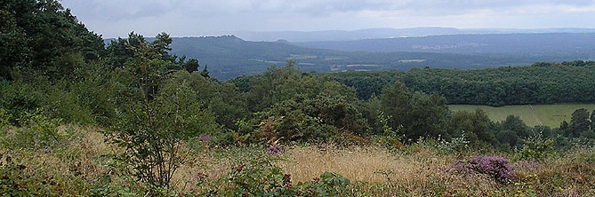 from Black Down