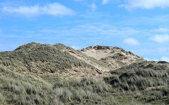 Holywell Dunes