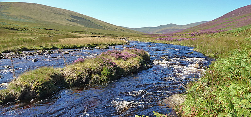 River Caldew