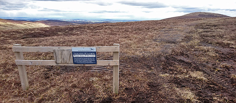 to Hedgehope Hill