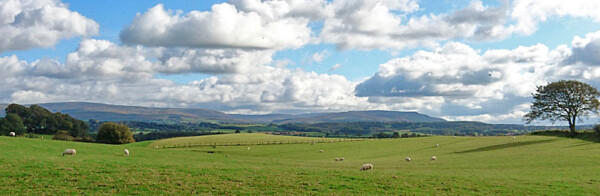 Cross Fell